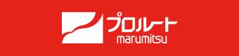 ルート 株価 プロ
